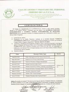 CONVOCATORIA ASAMBLEA 2014