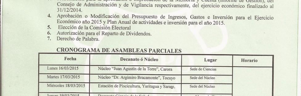 Convocatoria Marzo Asamblea 2015