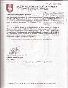AUDITORIA PLAN DE CUENTA  PAG  1