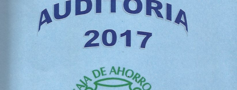 Auditoria Estados Financieros 2017